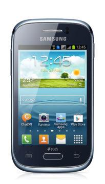 Samsung Young Duos Reparatur